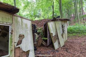Moos- und Laubbedeckter Bungalow Lost Place Usedom